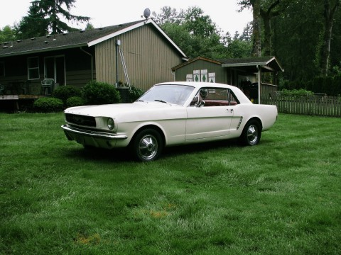 1964 Ford Mustang zu verkaufen