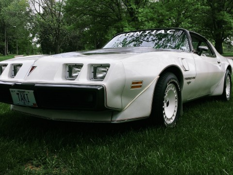 1980 Pontiac Trans Am zu verkaufen