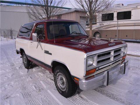 1987 Dodge Ram zu verkaufen